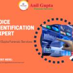 Voice identification expert